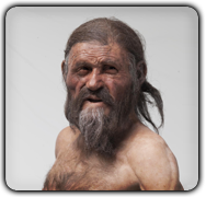 Oetzi the Iceman's Nuclear Genome Gives New Insights